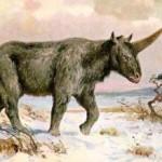 In Kazakistan i progenitori degli Unicorni