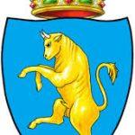 Torino 2016: Ballottaggio PD e 5Stelle