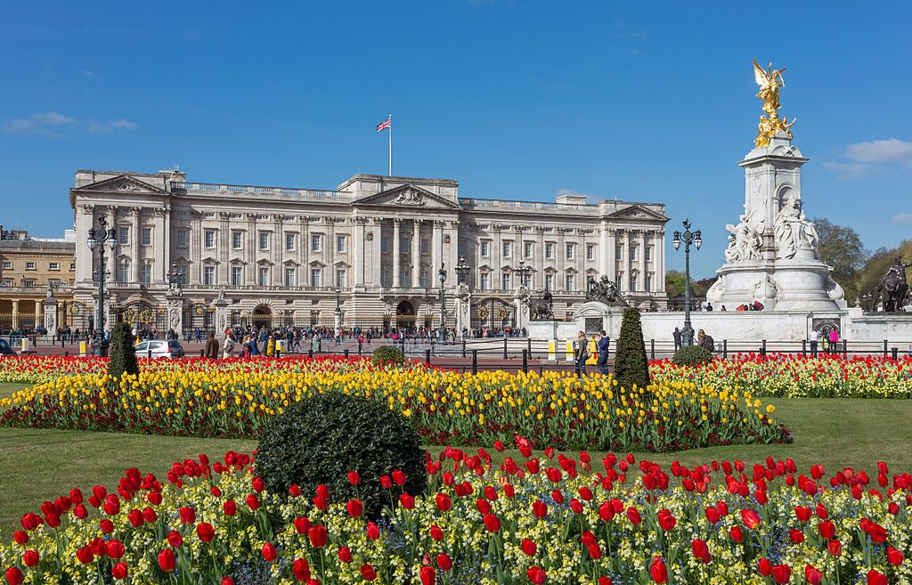 buckingham_palace_from_gardens_london_uk_-_diliff