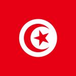 La Tunisia vieta i test anali per riconoscere i gay